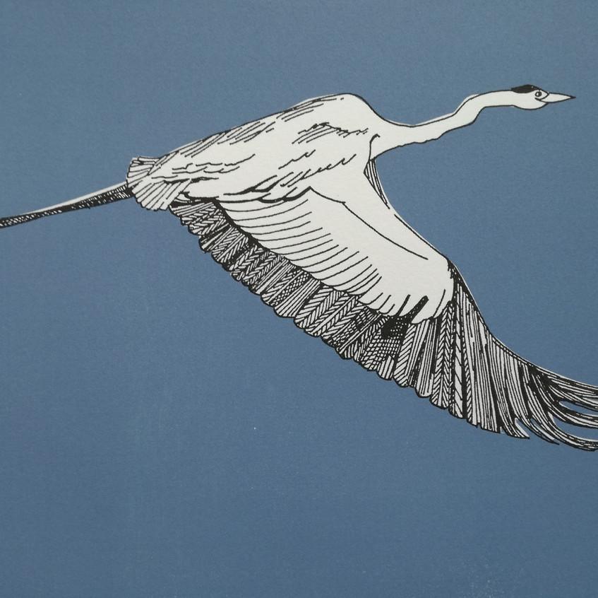 AmyHutchings-FlyingHeron