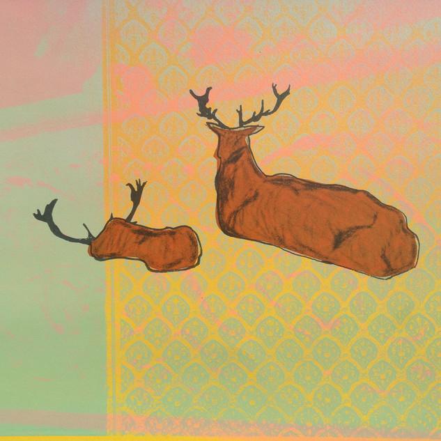 Amy Hutchings - Deer Pattern