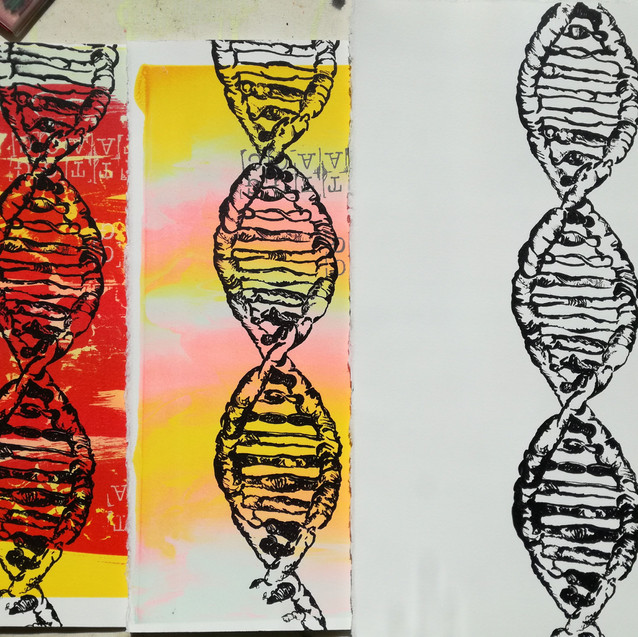 Amy Hutchings - DNA Variation