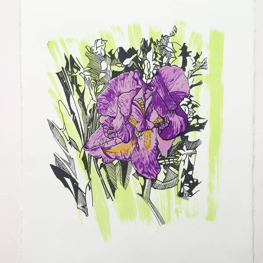 Amy Hutchings - Lilac Iris print