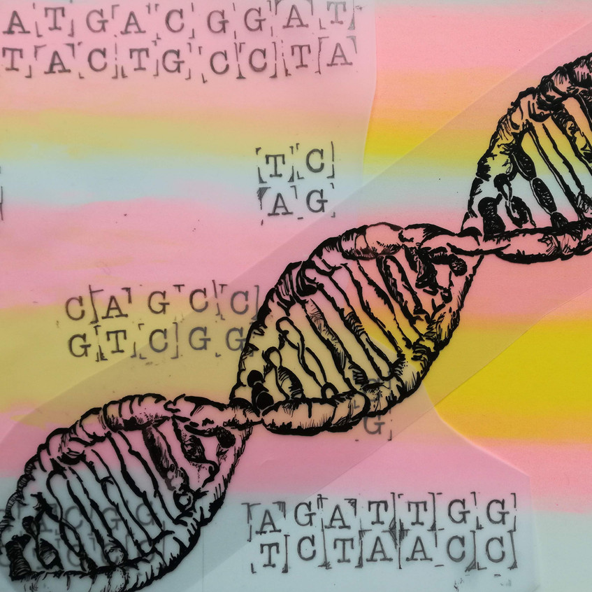 Amy Hutchings - DNA play