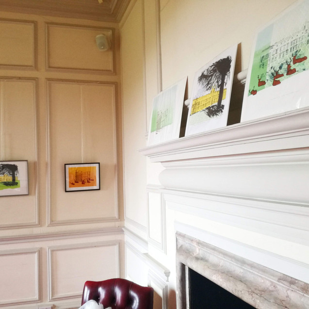 Amy Hutchings - Mansion Exhibition