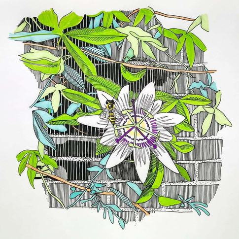 Amy Hutchings - Psssionate Flower