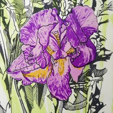 Amy Hutchings - Purple Crown.jpg