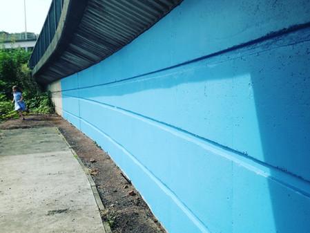 Cornflower blue canvas