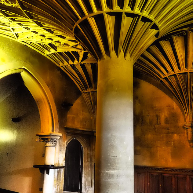 Amy Hutchings - The Vaulted Hall