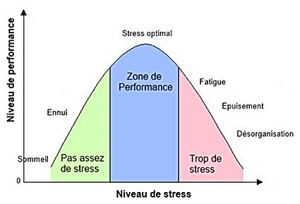 niveau-de-stress-et-performance.jpg