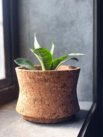 Matka Planter