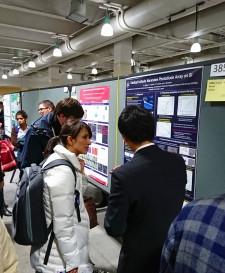 【学会発表/Conference】 MRS fall meeting 2017にて、千葉康平君(M2)がポスター発表、冨岡准教授が口頭発表を行ないました。