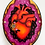 Thumbnail: Be True To You Anatomical Heart