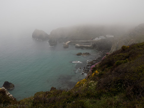 Mullion Cove In The Mist