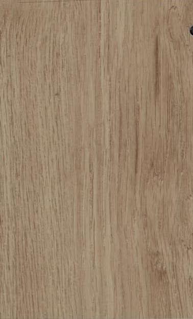 Safari XL