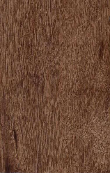 Rugged Brown XL