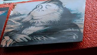 Monkey LP