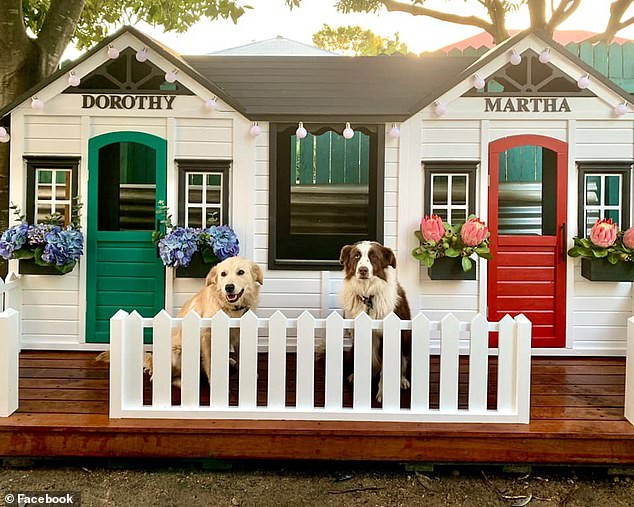 Brisbane woman Jessica Breen's epic DIY dog house for her beloved pets, golden retriever Dorothy (left) and sheepdog Martha (right)