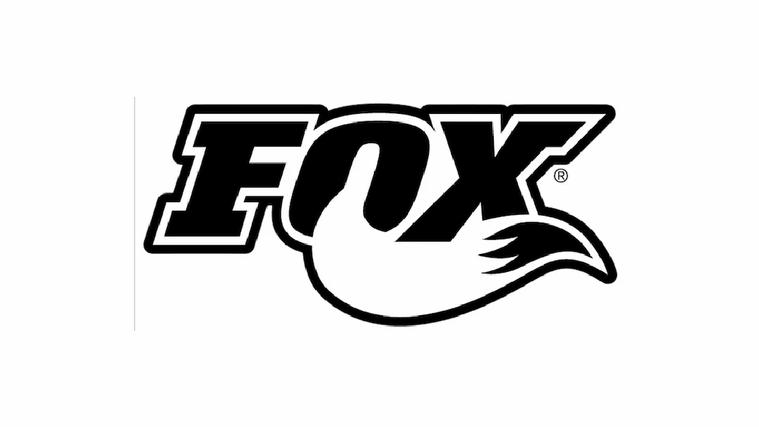Fox Banner.webp