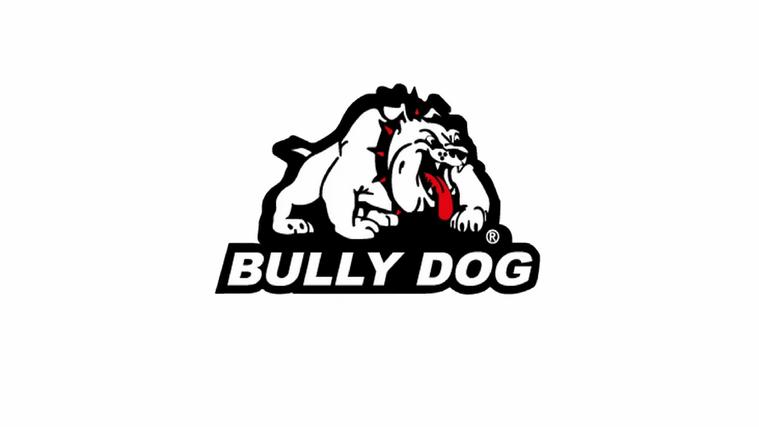 Bully Dog Banner.webp