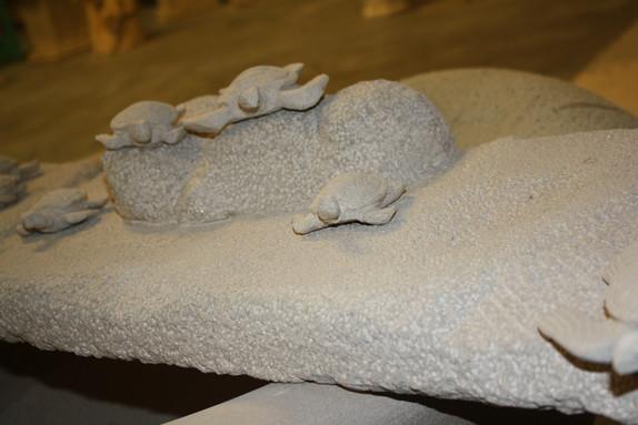 LIMESTONE TURTLES