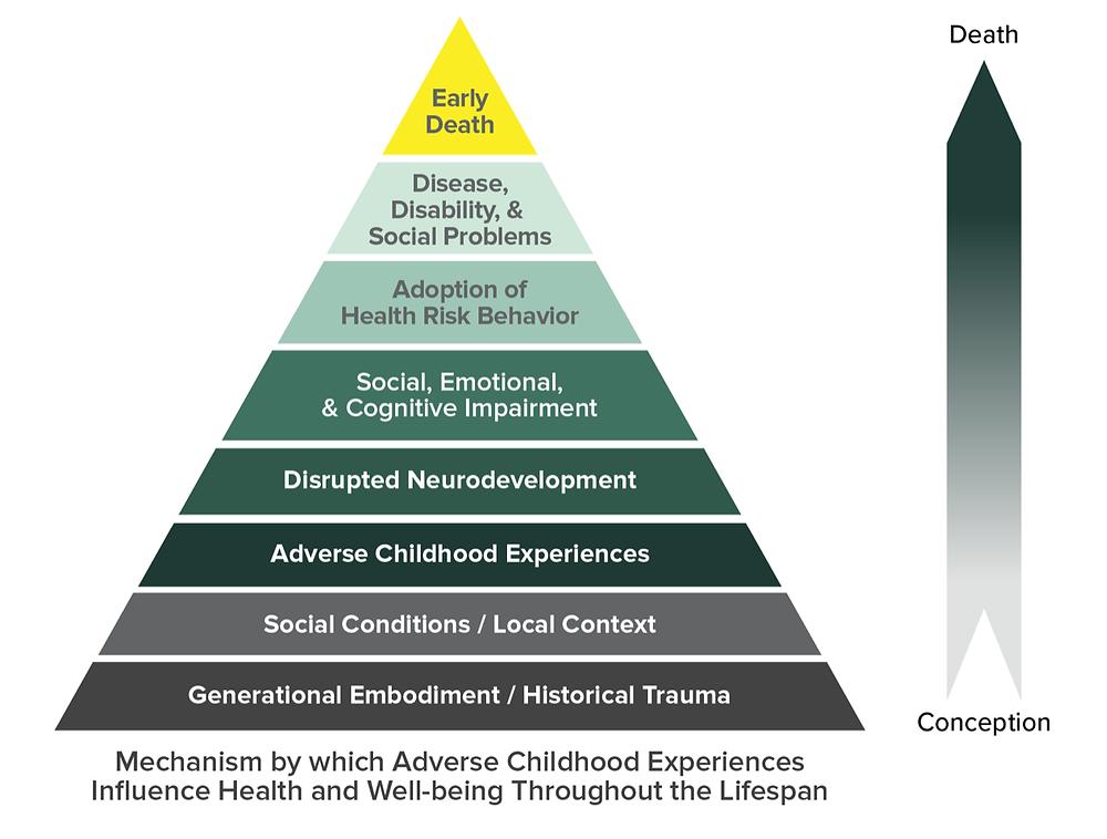 Figure 1: CDC Adverse Childhood Experience Pyramid