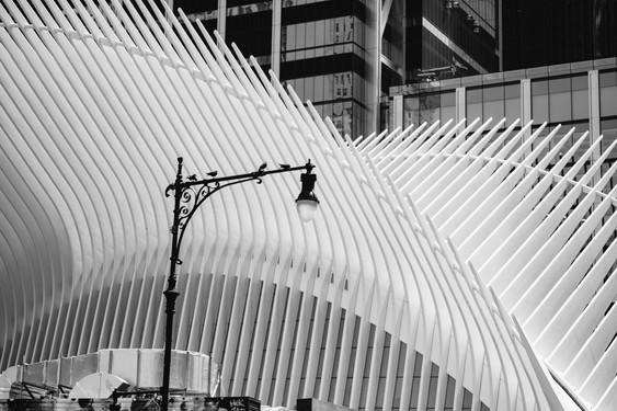 NYC-17.jpg