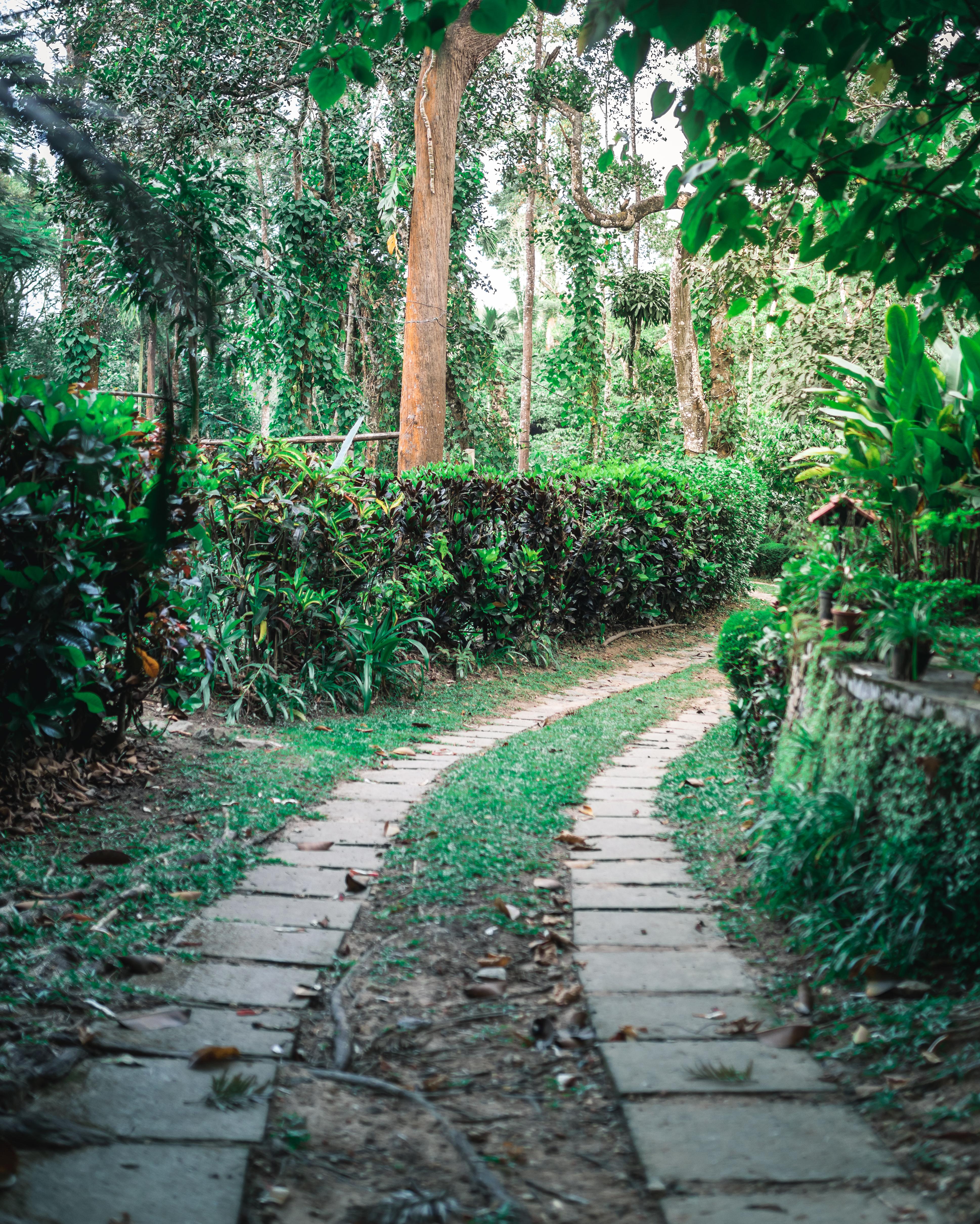Tranquil Resorts, Wayanad, Kerala