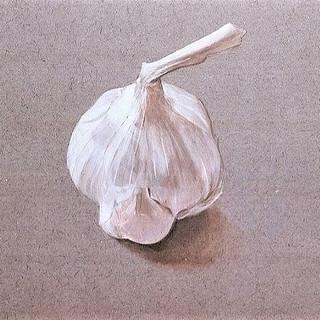 Garlic 1979 7x11 in.jpg