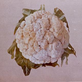 Cauliflower 1979 oil 36x48 in.jpg