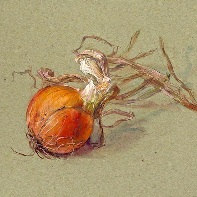 Onion 1980 7x11 in.jpg