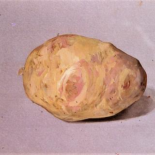 Potato 1979 7x11 in.jpg