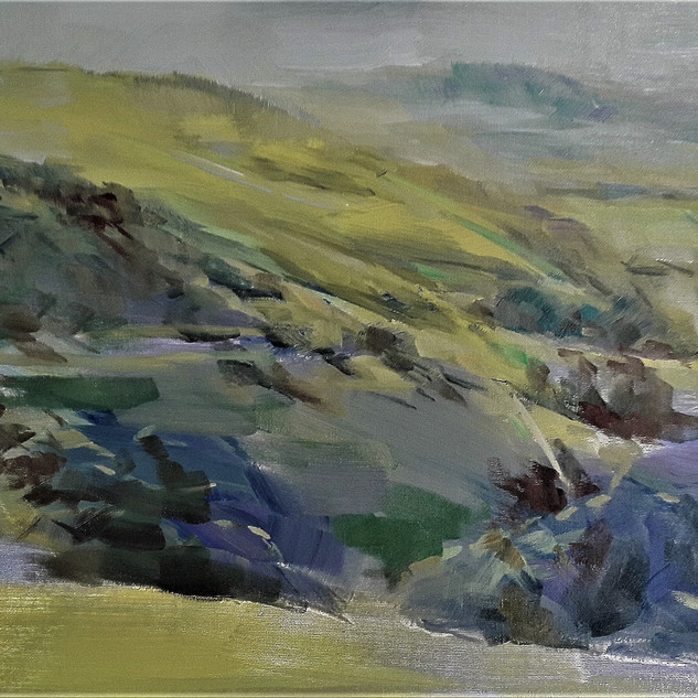 South Downs Way 2017 oil 14x18in.jpg