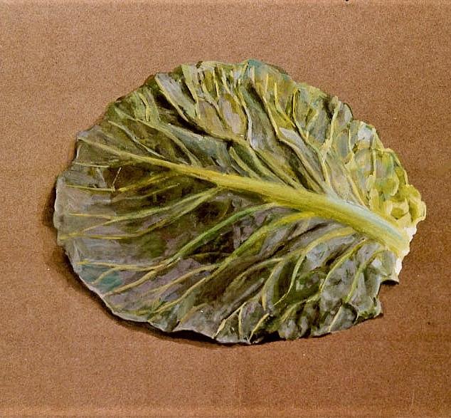 Cabbage Leaf 1978 7x11 in.JPG