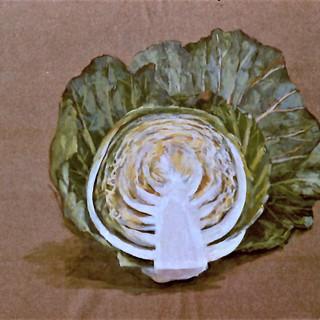 Hslf Cabbage 1978.jpg