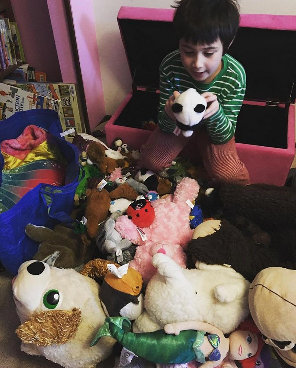 Professionally Organized Playroom In Portland