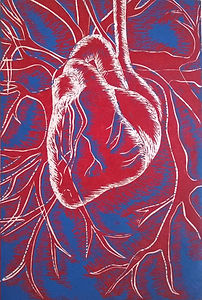anatomical heart linocut print limited edition in red, white and blue. Original unique artwork carved from lino hand printed on Japanese handmade paper. Medical wall art decor for sale.