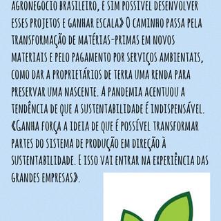Bioeconomia II _ Raquel Tognetti.jpg