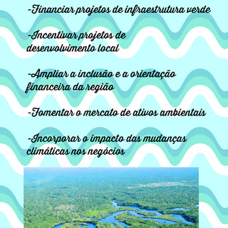 Plano_Amazônia_II___Raquel_Tognetti.jpg