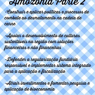 Plano_Amazônia_I___Raquel_Tognetti.jpg