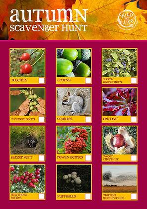 autumn scavenger hunt W4L.jpg