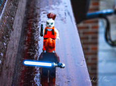 LEGO® in the Real World No. 22