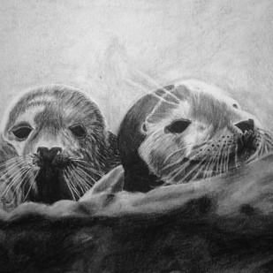 Seal at St. Mary's No. 3
