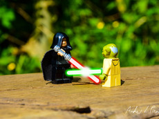 LEGO® in the Real World No. 14