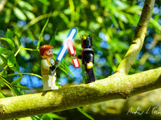 LEGO® in the Real World No. 16