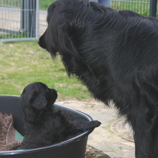 Banshee mit Mama Velia