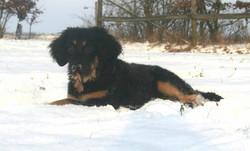 Ella Januar 2010