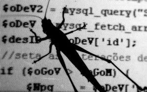 software_bug-300x189 (1).jpg