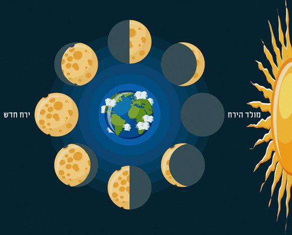 F0271849-Moon_phases,_illustration-SPL_5