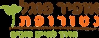logo ofir fogel.png