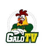 galo tv - foto.png
