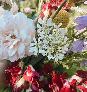 Wedding Roses_edited.jpg