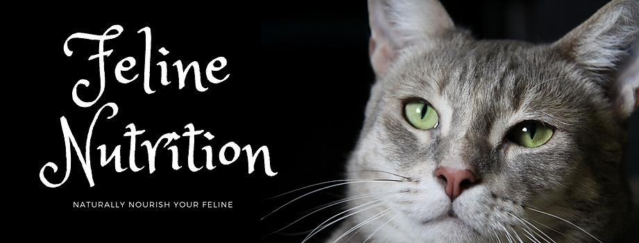 Feline NutritionBanner.png